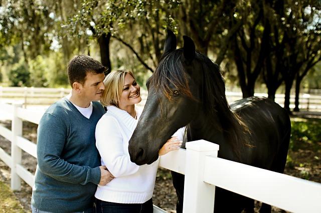 muž, žena, černý kůň