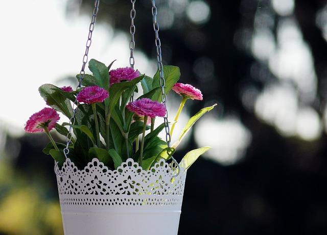 závěsný plastový květináč